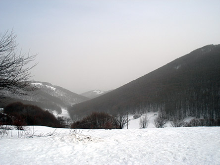 snowy landscape screenshot